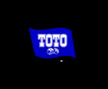 Тотобет: отзывы о букмекерской конторе